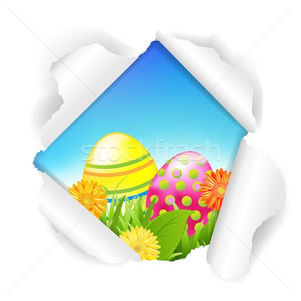 рваной бумаги цветы цвета яйца градиент Сток-фото © barbaliss
