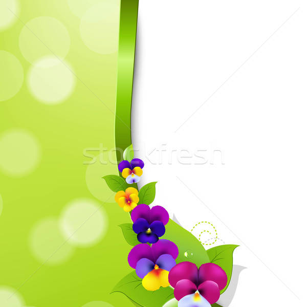 Colorful Pansies Flowers Stock photo © barbaliss
