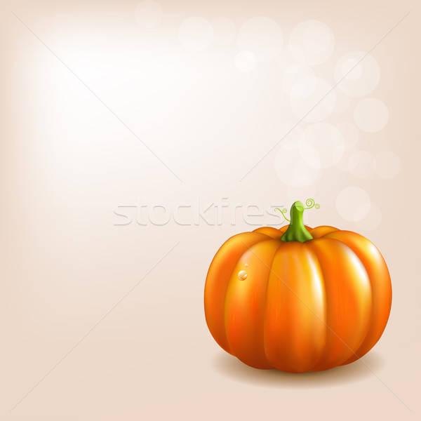 Orange Pumpkin With Bokeh Stock photo © barbaliss