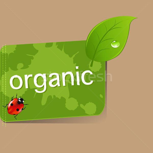 Organic Label Stock photo © barbaliss