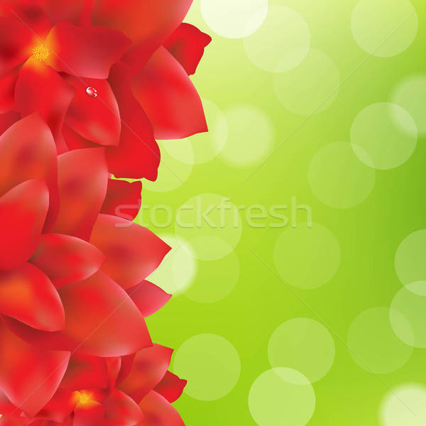 Red Flowers Border With Green Bokeh Stock photo © barbaliss