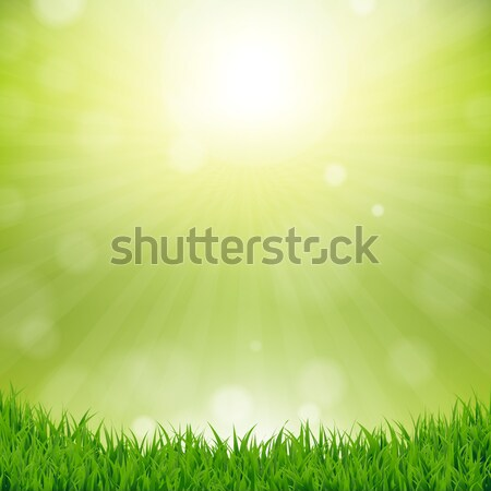 Grass Border With Nature Background Stock photo © barbaliss