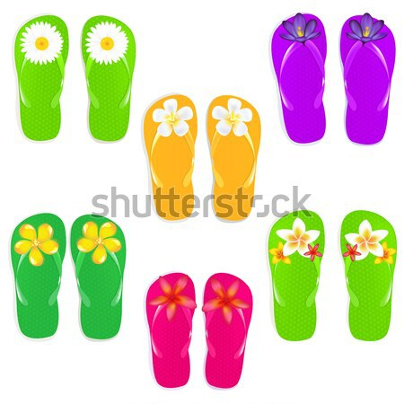 Flip Flops With Camomile Stock photo © barbaliss