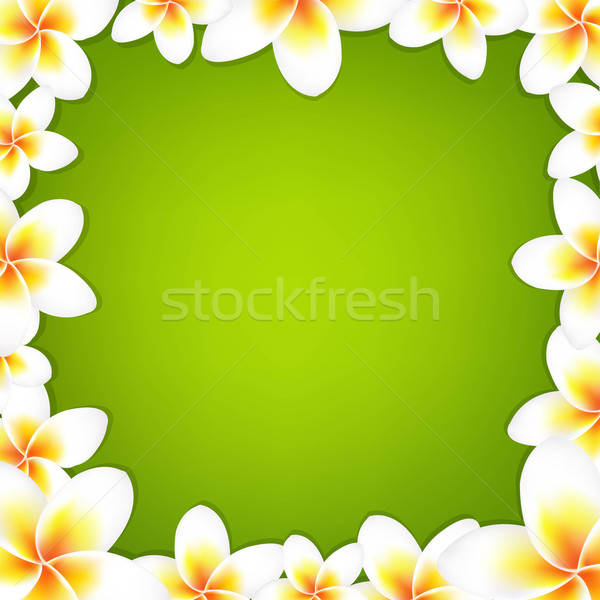 White Frangipani Frame With Green Background Stock photo © barbaliss