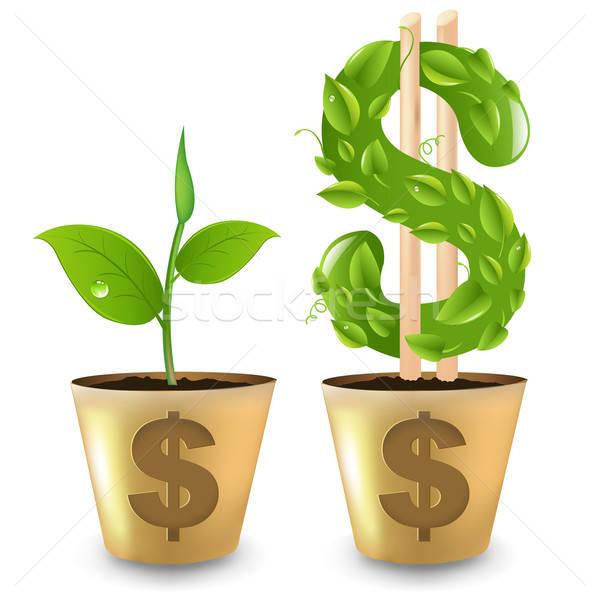Gold Topf Dollar Business Natur Stock foto © barbaliss