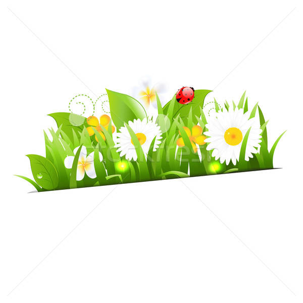 Bunch Of Flowers With Grass And Ladybug Stock photo © barbaliss