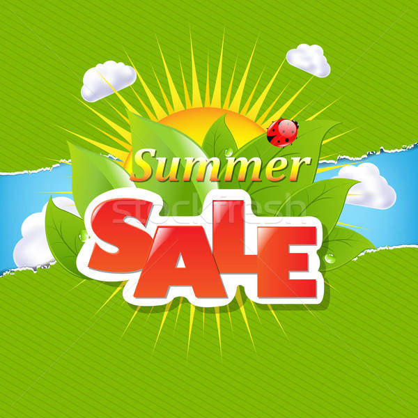 Green Torn Paper Borders And Summer Sale Banner Stock photo © barbaliss
