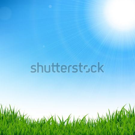 Blue Sky With Grass Stock photo © barbaliss