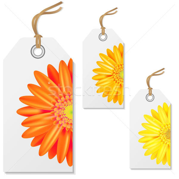 Sale Tags With Gerbers Stock photo © barbaliss