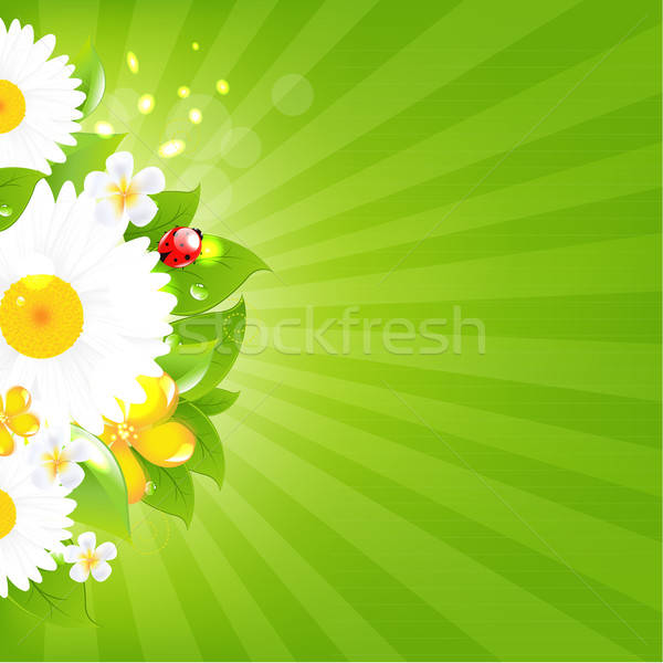 Bunch Of Flowers With Grass And Sunburst Stock photo © barbaliss