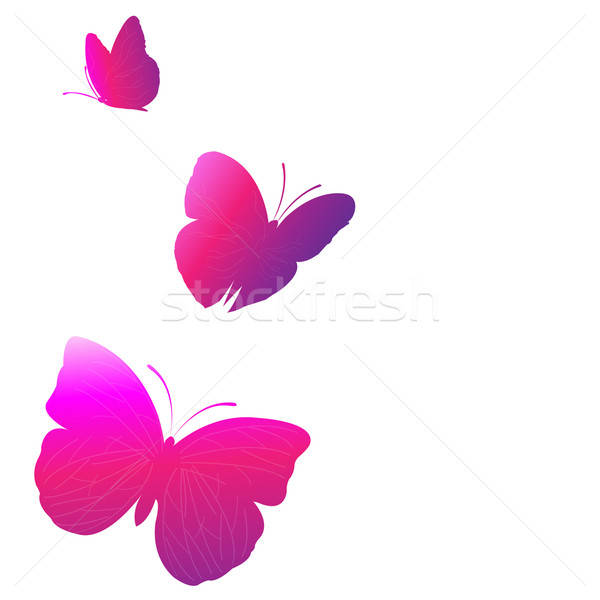 Papillon lumineuses papillons isolé blanche nature Photo stock © barbaliss