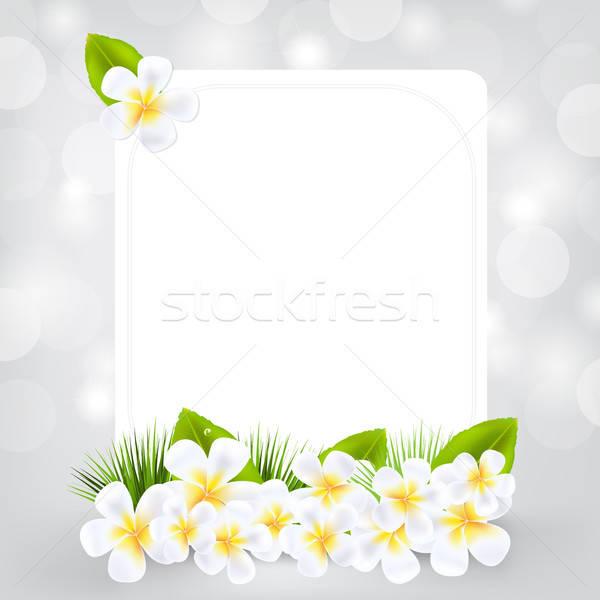 Tarjeta de regalo aislado gris flor naturaleza fondo Foto stock © barbaliss