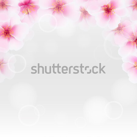 Cherry Flower Border With Blur Stock photo © barbaliss