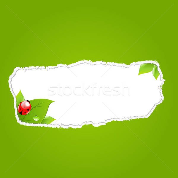 Green Paper Hole With Leaf Stock photo © barbaliss