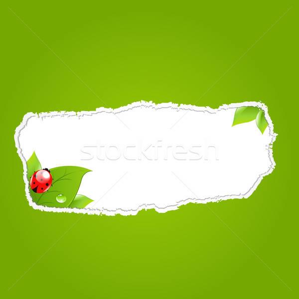 Vert papier trou feuille design goutte d'eau Photo stock © barbaliss
