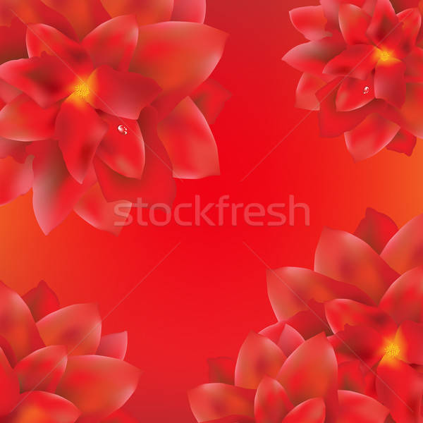 Card With Red Flowers Border Stock photo © barbaliss