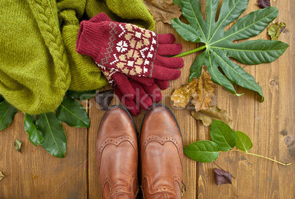 Boots, gloves and scarf Stock photo © BarbaraNeveu