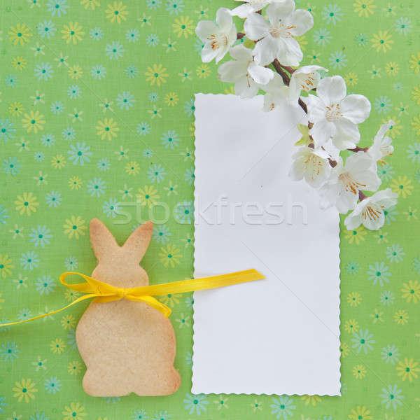 Cookie форма Пасхальный заяц зеленый цветы Bunny Сток-фото © BarbaraNeveu