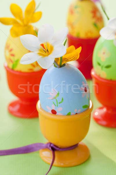 Crocus verniciato easter eggs colorato fresche fiori Foto d'archivio © BarbaraNeveu