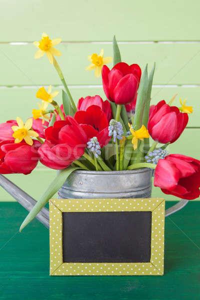 красный тюльпаны Vintage лейка зеленый доске Сток-фото © BarbaraNeveu