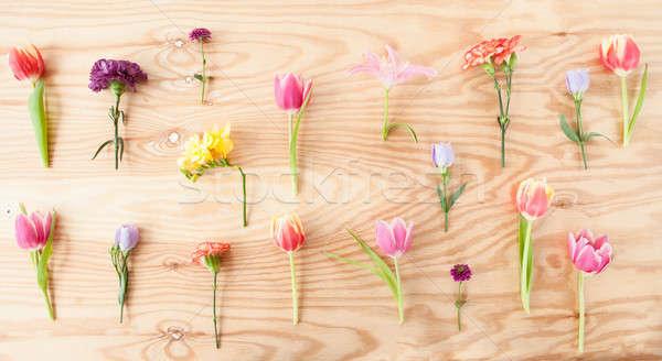 Variedad frescos flores flores de primavera rústico Foto stock © BarbaraNeveu