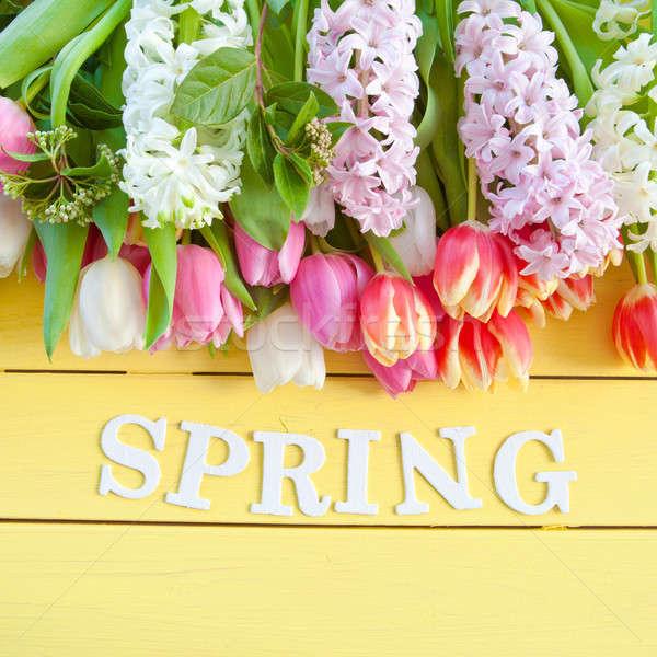 красочный весенние цветы желтый Пасху древесины Сток-фото © BarbaraNeveu