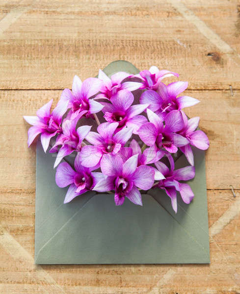 Colorful flowers in envelope Stock photo © BarbaraNeveu