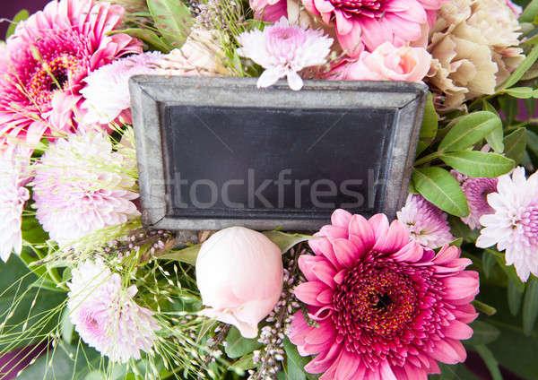 Colorful pink flowers Stock photo © BarbaraNeveu