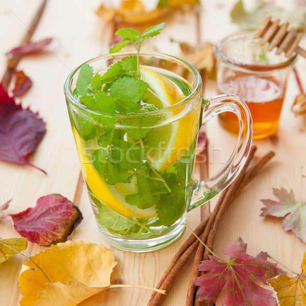Tea with fresh mint Stock photo © BarbaraNeveu