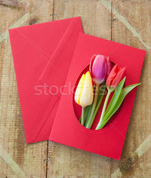 красочный цветы конверт весенние цветы цветок доставки Сток-фото © BarbaraNeveu