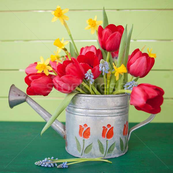 красный тюльпаны Vintage лейка зеленый желтый Сток-фото © BarbaraNeveu