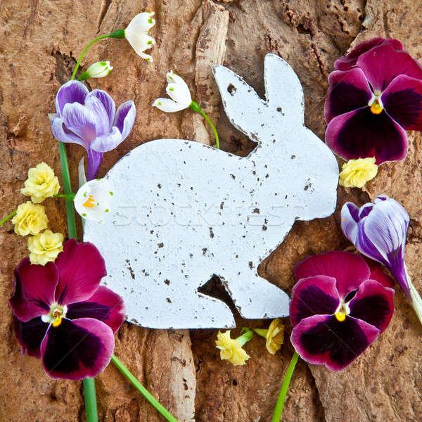 Flores de primavera rústico frescos Pascua flores Foto stock © BarbaraNeveu