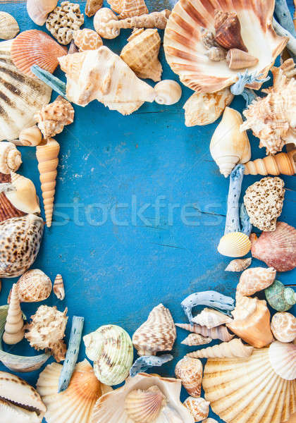 Stock photo: Weathered wooden background with sea shells