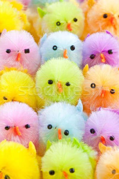 красочный Пасху цыплят различный ярко цветами Сток-фото © BarbaraNeveu