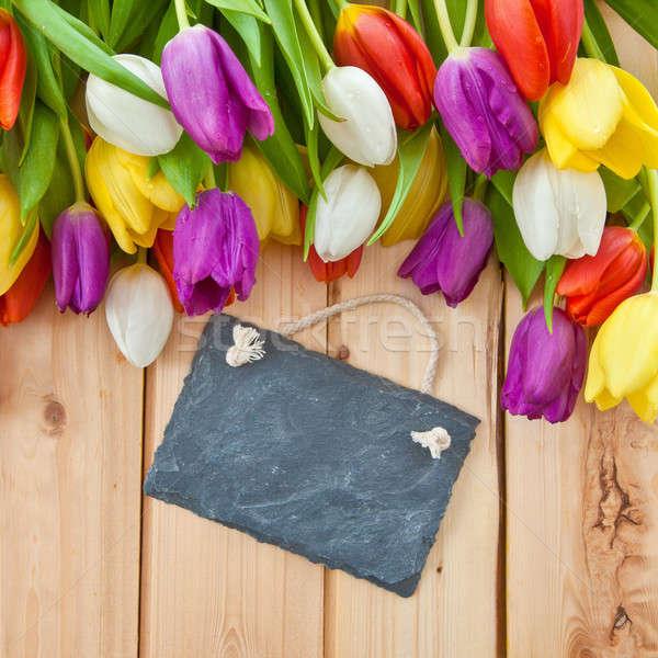 Colorful tulips in springtime Stock photo © BarbaraNeveu