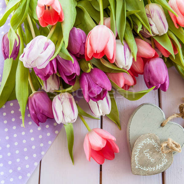 Colorful tulips on purple Stock photo © BarbaraNeveu