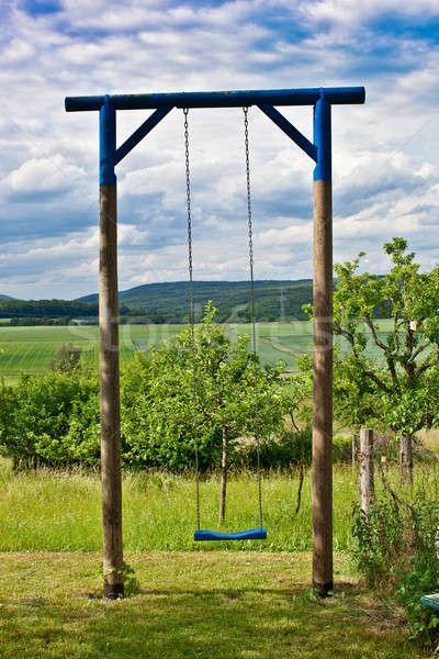 одиноко Swing саду мнение полях лес Сток-фото © BarbaraNeveu
