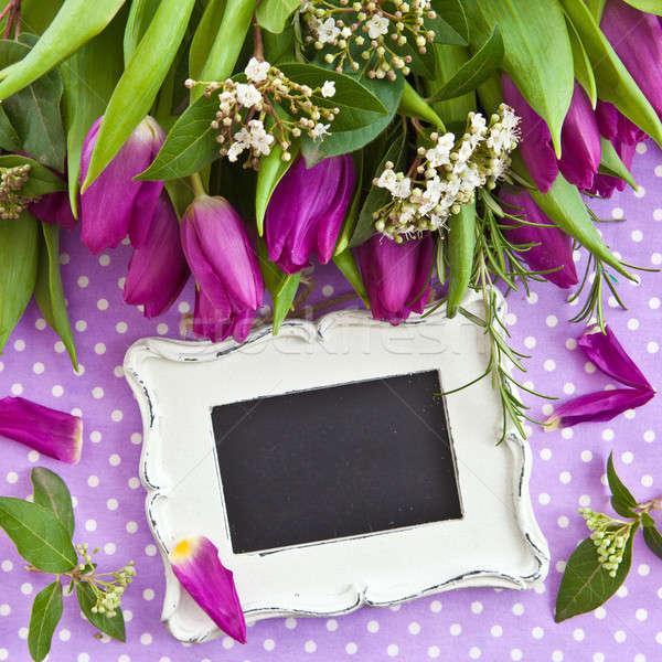 Fresche viola tulipani bouquet fioritura rami Foto d'archivio © BarbaraNeveu