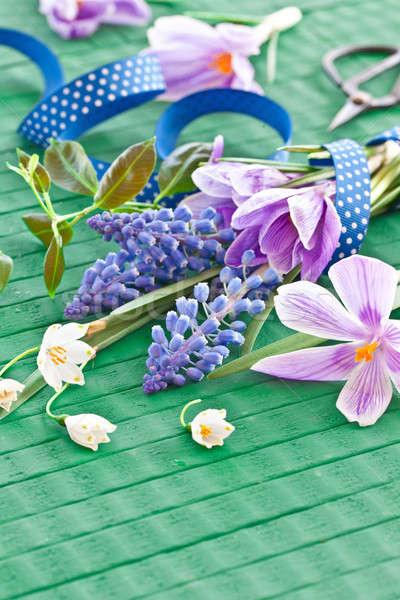 Frischen Frühlingsblumen grünen rustikal Holz Ostern Stock foto © BarbaraNeveu