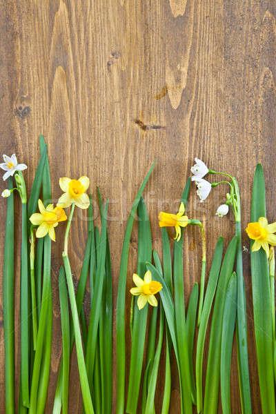 Bahar çiçekleri ahşap taze Paskalya bahar yaprakları Stok fotoğraf © BarbaraNeveu