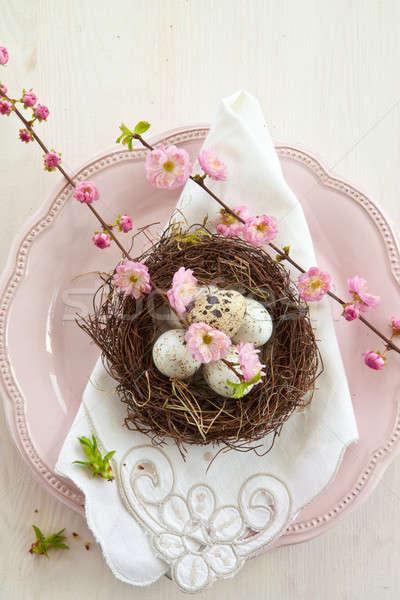 Little easter nest on pink plate Stock photo © BarbaraNeveu