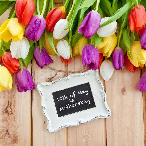Fresh tulips on wooden background Stock photo © BarbaraNeveu