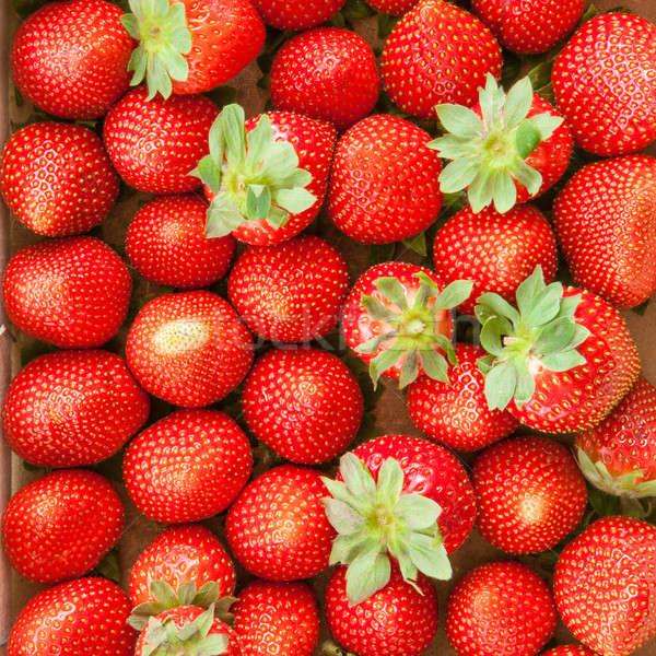 Fresh ripe strawberries Stock photo © BarbaraNeveu