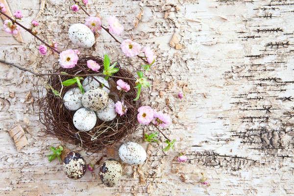 Kicsi húsvét fészek tojások rózsaszín virágok Stock fotó © BarbaraNeveu