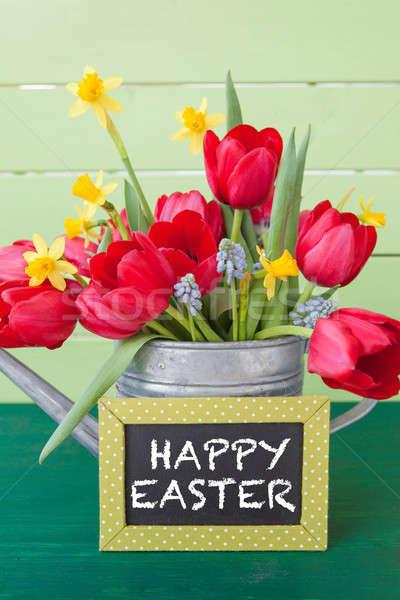 Vermelho tulipas vintage regador verde lousa Foto stock © BarbaraNeveu