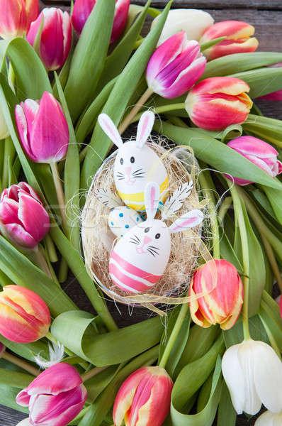 Húsvét fészek tulipánok derűs fényes színes Stock fotó © BarbaraNeveu