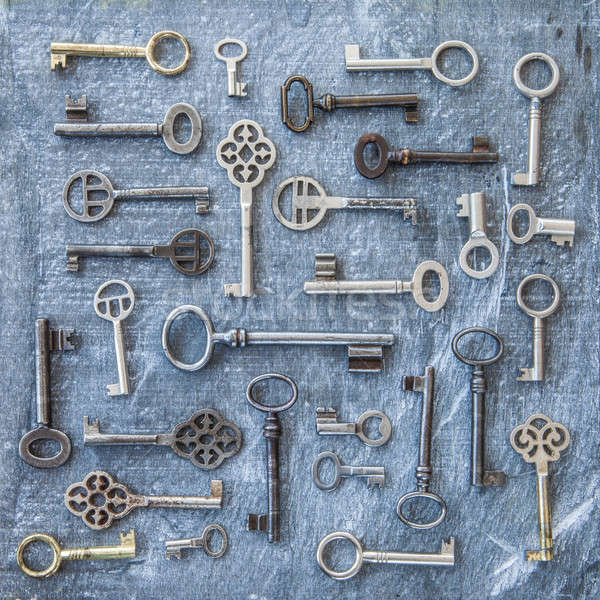 Variëteit sleutels donkere houten vintage veiligheid Stockfoto © BarbaraNeveu