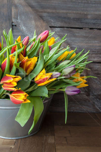 Colorful tulips in vintage bucket Stock photo © BarbaraNeveu