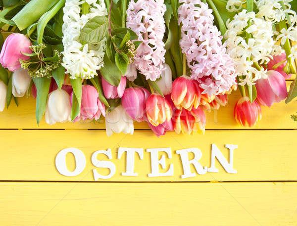 Fresco colorido flores da primavera primavera amarelo Foto stock © BarbaraNeveu