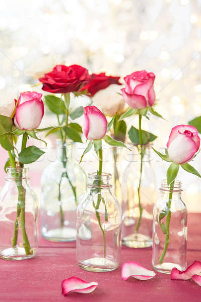 Fresh roses in front of little lights Stock photo © BarbaraNeveu
